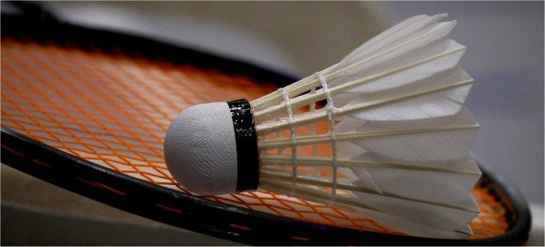 Badminton ATSV Freiberg